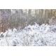 BeamZ SNOW5000 High Volume Snow Machine